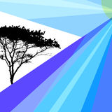 Abstract Images of Nature, Tree. Brochure, Booklet stock illustration