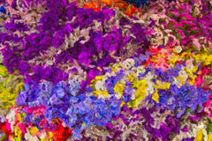 Abstract impressionist art work Royalty Free Stock Image