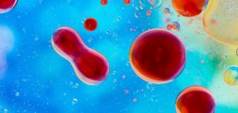 Abstract imune system. Red oil bubbles on blue water stock photos