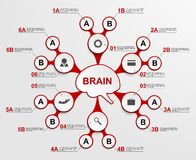 Abstract infographic as metabolic forms in the center of the brain. Design elements. Stock Image