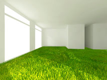 Grass in room Stock Image