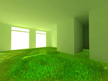 Grass in room Royalty Free Stock Images