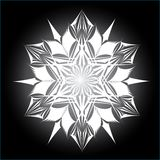 Abstract isolated vector snowflake Royalty Free Stock Photos