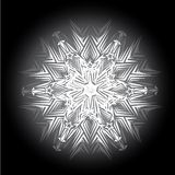 Abstract isolated vector snowflake Stock Photos