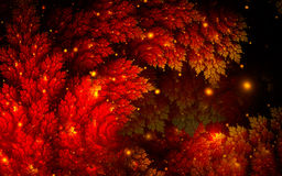 Abstract juniper branch in red. Abstract fractal background with red juniper branch and glowing lights Stock Photography