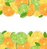 Abstract Kader met Gesneden Sinaasappelen Stock Afbeelding