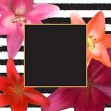 Abstract Kader met Lily Flower Natuurlijke achtergrond Vector illustratie Royalty-vrije Stock Afbeelding