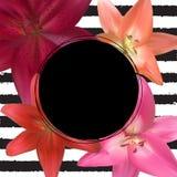 Abstract Kader met Lily Flower Natuurlijke achtergrond Vector illustratie Royalty-vrije Stock Afbeeldingen