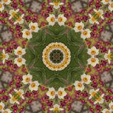 Abstract kaleidoscope with daffodil flowers at springtime royalty free stock photography
