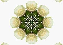 Abstract kaleidoscopic pattern Royalty Free Stock Photos