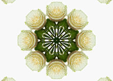 Abstract kaleidoscopic pattern Stock Photos