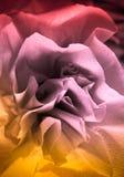 Abstract kleurendocument patroon Royalty-vrije Stock Foto
