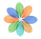 Abstract kleurrijk geïsoleerde Blad Royalty-vrije Stock Afbeeldingen