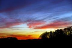 Abstract kleurrijk zonsonderganglandschap met boomsilhouet Stock Foto's