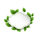 Abstract label with eco green leaves, isolated on white backgrou Stock Photos