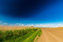 Abstract landelijk landschap in de lente, met oneindige horizon, heldere kleuren, langs natuurlijk meer met rietinstallaties Stock Foto