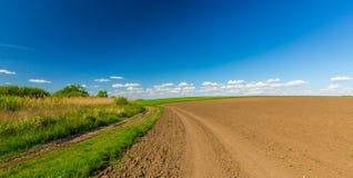 Abstract landelijk landschap in de lente, met oneindige horizon, heldere kleuren, langs natuurlijk meer met rietinstallaties Royalty-vrije Stock Foto's