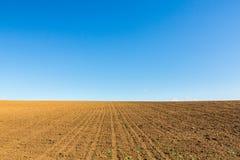 Abstract landelijk landschap in de lente, met oneindige horizon, heldere kleuren, langs natuurlijk meer met rietinstallaties Royalty-vrije Stock Afbeelding