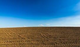Abstract landelijk landschap in de lente, met oneindige horizon, heldere kleuren, langs natuurlijk meer met rietinstallaties Stock Foto's