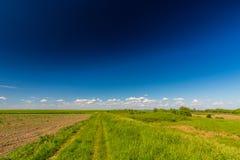 Abstract landelijk landschap in de lente, met oneindige horizon, heldere kleuren, langs natuurlijk meer met rietinstallaties Stock Afbeeldingen