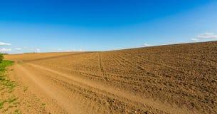 Abstract landelijk landschap in de lente, met oneindige horizon, heldere kleuren, langs natuurlijk meer met rietinstallaties Royalty-vrije Stock Foto