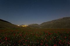 Flowering castelluccio 1. Abstract landscape of the flowering castelluccio royalty free stock photos