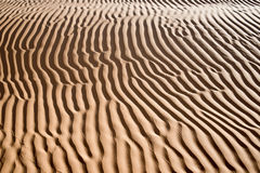 Abstract landscape in the Sand dunes desert of Sahara Royalty Free Stock Photography