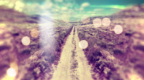 Abstract landscape scenery. Stock Photos