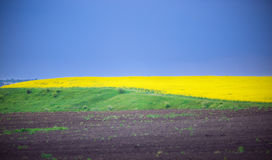 Abstract landschap Stock Foto's