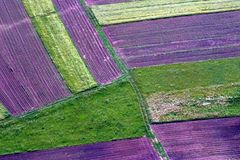 Abstract landschap Royalty-vrije Stock Foto