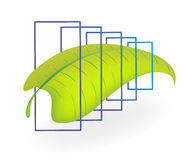 Abstract leaf. Element for design vector illustration Royalty Free Stock Photos