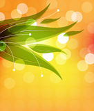 Abstract leaf Stock Photography