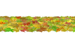 Abstract leaf band Royalty Free Stock Images
