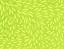 Abstract leaf doodle scene vector Royalty Free Stock Photography