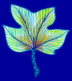 Abstract leaf drawing Royalty Free Stock Images