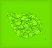 Abstract leaf on green Stock Photo