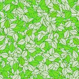 Abstract leaf pattern. Illustration of green and white leaves Royalty Free Stock Photos
