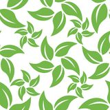 Abstract leaf pattern Stock Photography