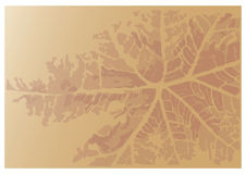 Abstract Leaf Print Vector Background. In brown tones Stock Photos