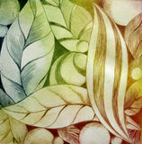 Abstract Leafs. And fruits, created by the photographer in dry-point technique stock illustration