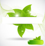 Abstract leaves banner background Royalty Free Stock Photo