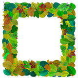 Abstract leaves mosaic photo frame Stock Photos
