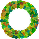 Abstract leaves round  photo frame Royalty Free Stock Photos