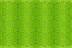 Abstract leaves seamless pattern background Royalty Free Stock Photos
