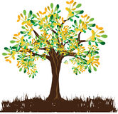 Abstract leaves tree vector Stock Photo
