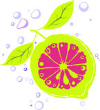 Abstract lemon Stock Images