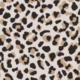 Abstract Leopard Skin Seamless Pattern. Animal Fur Wallpaper Stock Image