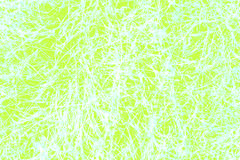 Abstract light green background from hay texture Stock Image