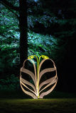 Abstract light-painting shape in forest. At night Royalty Free Stock Photography