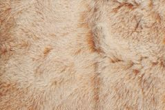 Abstract light red and brown shaggy fluffy fur textured background stock images